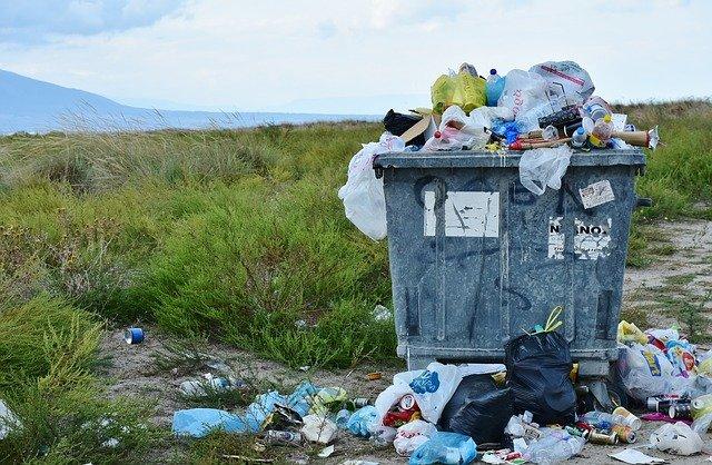 Kreislaufwirtschaft: Renditen durch Müllvermeidung